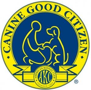 cgc_logo-300x297
